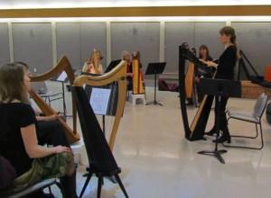 Harp Workshops